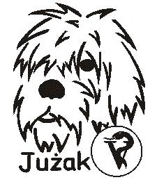 JUŻAK
